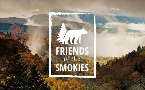 Explore The Smokies