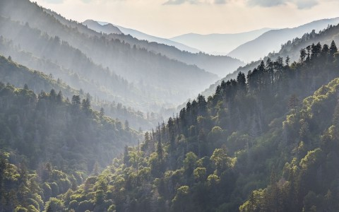 Smoky Mountains with sunlight shining through tree filled mountains