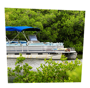white pontoon boat with blue awning