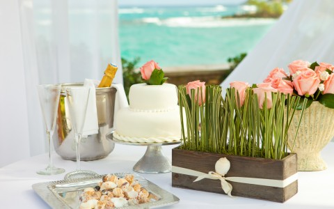 Vow Renewal Wedding Package