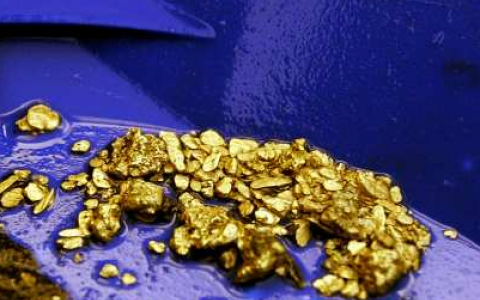 California's Gold Rush