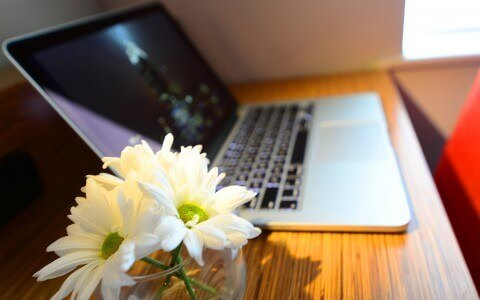 White flowers next to MacBook Pro laptop