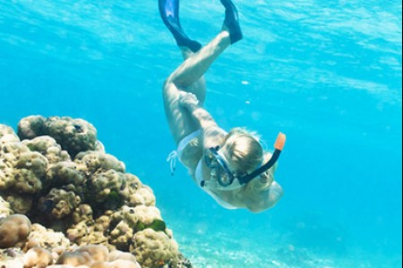 Snorkel an Underwater World