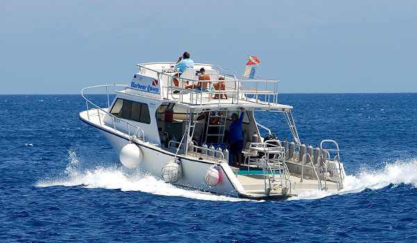 GUIDED BOAT DIVING