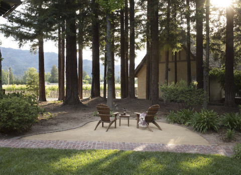 two Adirondack chairs facing the trees and vineyards