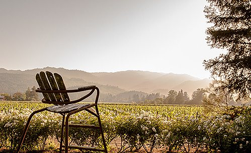Chair overlooking vineyards & mountains
