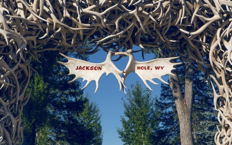 Jackson Hole Antler bridge