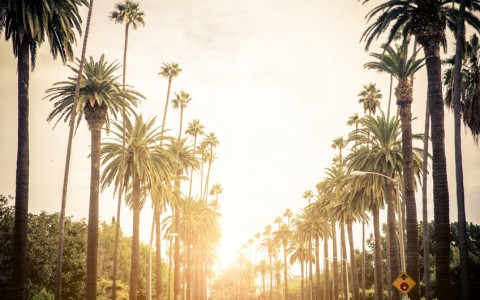 Experience the Luxe Life in West Hollywood