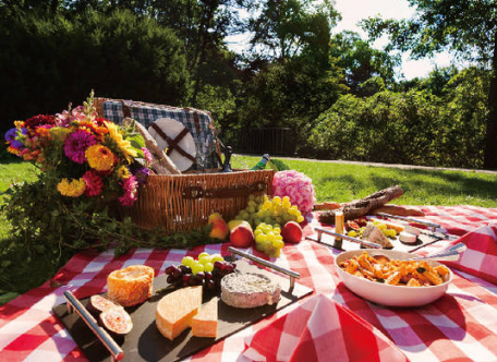 Best NYC Picnic Spots