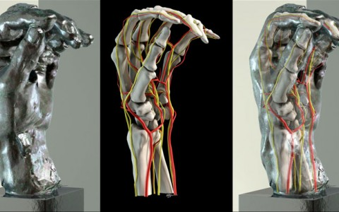 3 images of a hang gradual transforming from a computer generated skeleton to a metal sculpture