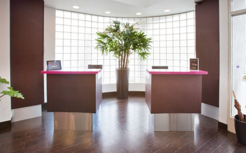 Menlo lobby, walk in to dual desks in front of large glass block window and plant