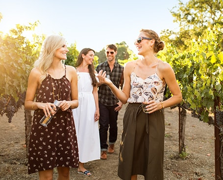 V.I.P. Winery Tour Package