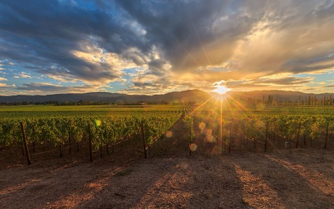 NapaValley-Sunset-58f800529b9d1.jpg