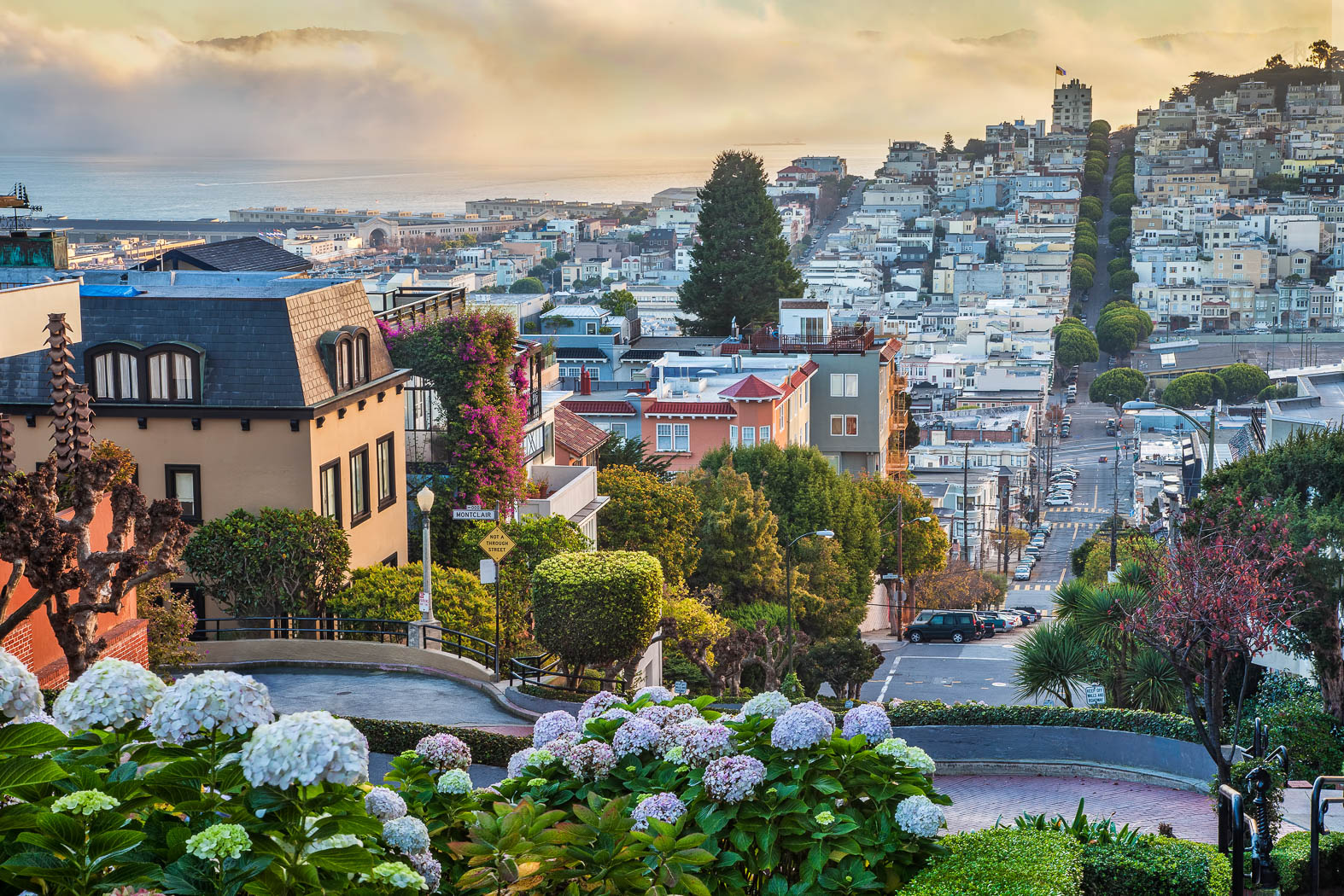 San Francisco Waterfront Patio Lombard Street