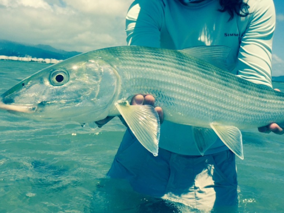 Marathon's International Bonefish Tournament