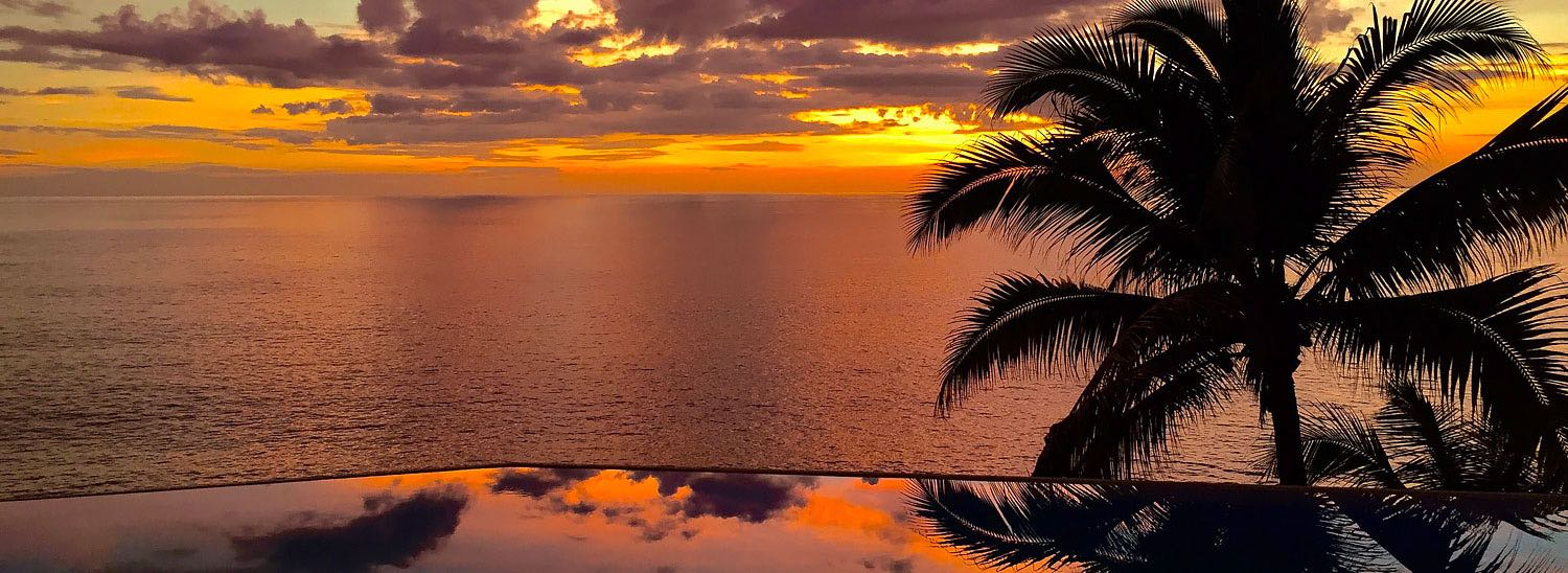 Sunsetting on ocean with palm tree silhouette