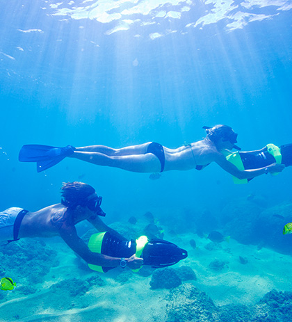 Diving and Snorkeling Image