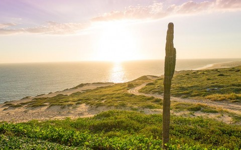 On The Radar: The St. Regis Los Cabos at Quivira