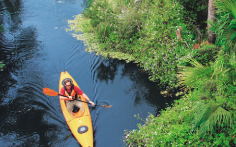 Paddle Your Way Through Sanibel Island