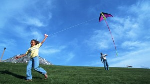 Annual Kite Flying Competition