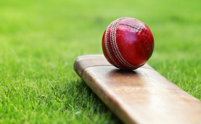 Red cricket ball and bat on grass