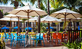 Reef El Palmar all inclusive bar