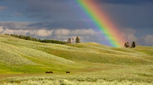 Rainbow over rolling landscape